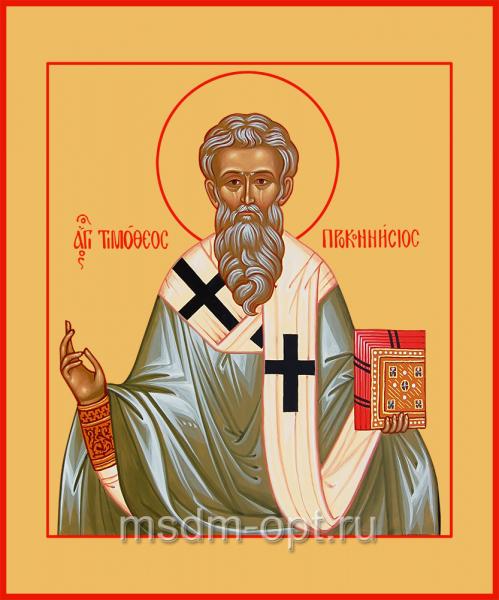 Cвятитель Тимофей, епископ Проконесский, икона (арт.04719)