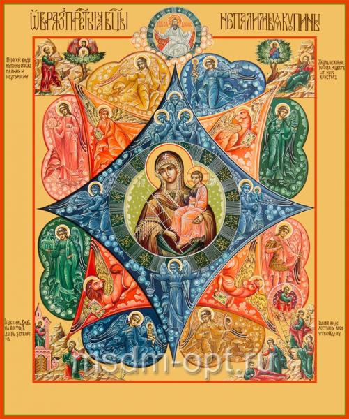 Неопалимая Купина икона Божией Матери (арт.6223)