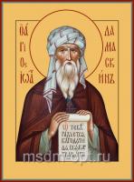 Иоанн Дамаскин преподобный, икона (арт.00053)