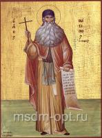 Максим Грек преподобный, икона (арт.00071)