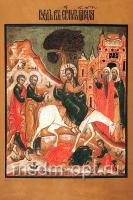 Вход Господень в Иерусалим, икона (арт.03006)