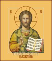 Господь Вседержитель икона (арт.04109)