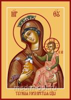 Тучная Гора икона Божией Матери (арт.06391)