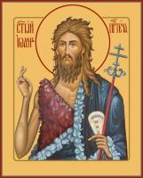Иоанн Предтеча Креститель Господень, икона (арт.06403)