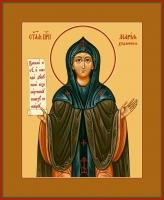 Мария Хиданская блаженная, икона (арт.06809)