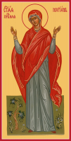 Праведная Мариамна (Мария), сестра апостола Фили́ппа, икона (арт.м0371)